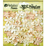Petaloo - Penny Lane Collection - Floral Embellishments - Mini Daisy Petites - Antique Beige
