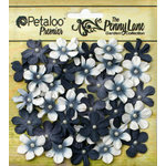 Petaloo - Penny Lane Collection - Floral Embellishments - Mini Daisy Petites - Black