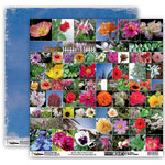 Donna Salazar - Memory Mosaics Collection - 12 x 12 Double Sided Paper - Flowers and Nature, CLEARANCE