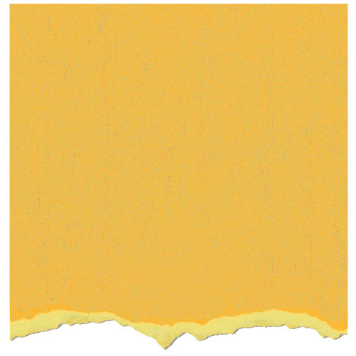 Core'dinations - Tim Holtz - Distress Collection - 12 x 12 Textured Cardstock - Mustard Seed