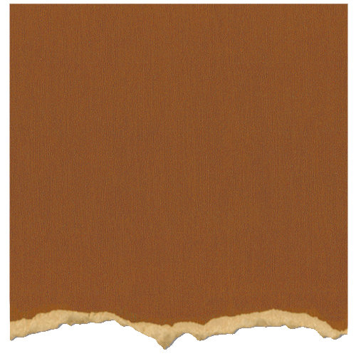 Core'dinations - Tim Holtz - Distress Collection - 12 x 12 Textured Cardstock - Tea Dye