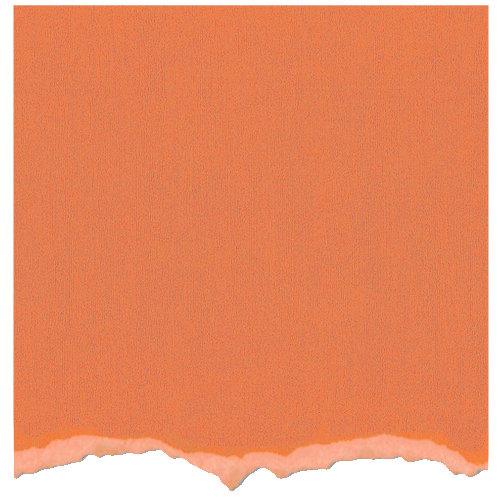 Core'dinations - Tim Holtz - Distress Collection - 12 x 12 Textured Cardstock - Dried Marigold