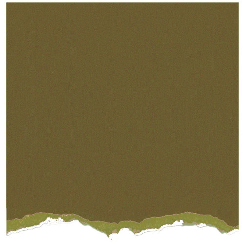 Core'dinations - Tim Holtz - Distress Collection - 12 x 12 Textured Cardstock - Crushed Olive