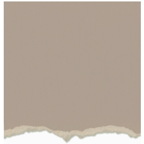 Core'dinations - Tim Holtz - Adirondack Collection - 12 x 12 Textured Cardstock - Lake Mist