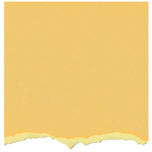 Core'dinations - Tim Holtz - Adirondack Collection - 12 x 12 Textured Cardstock - Lemonade