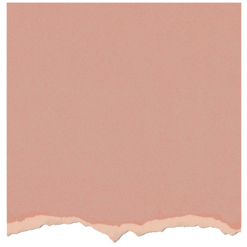 Core'dinations - Tim Holtz - Adirondack Collection - 12 x 12 Textured Cardstock - Salmon