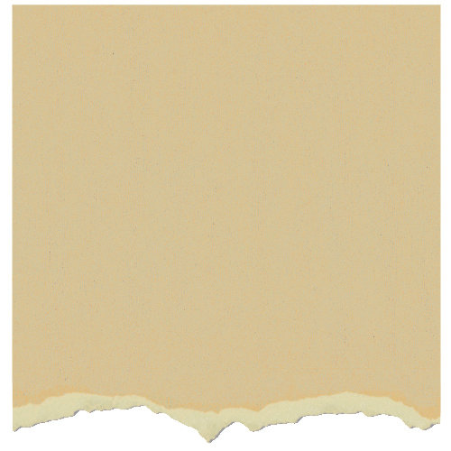 Graphic 45 - Core'dinations - Signature Series Collection - 12 x 12 Textured Color Core Cardstock - Venetian Lace