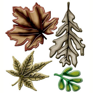 Spellbinders - Shapeabilities Collection - Die Cutting and Embossing Templates - Assorted Leaves