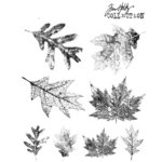Stampers Anonymous - Tim Holtz - Cling Mounted Rubber Stamp Set - Falling Leaves