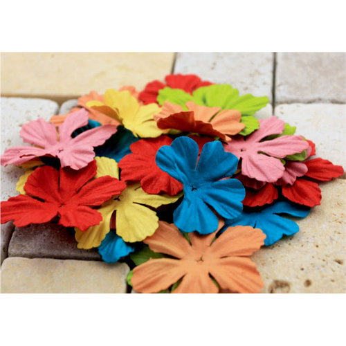 Prima - E Line - Bermuda Breeze Collection - Flower Embellishments - Assorted Bright