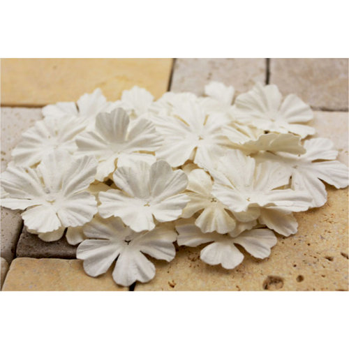 Prima - E Line - Bermuda Breeze Collection - Flower Embellishments - White