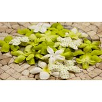 Prima - E Line - Flower Embellishments - Green Mix 2, CLEARANCE