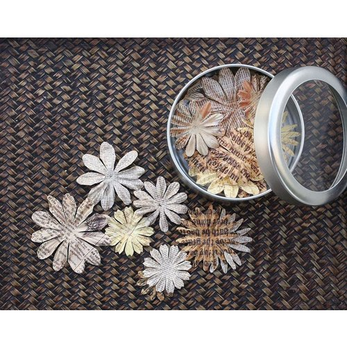 Prima - Artistry Flowers Collection - Flower Mini Tin - Daisy, CLEARANCE