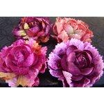 Prima - Windsor Roses Collection - Flowers - Hampton