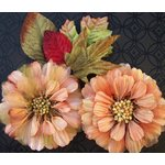 Prima - Juliette Collection - Flowers - Apricot