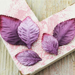 Prima - Heirloom Rose Collection - Velvet Leaves - Plum, BRAND NEW