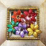 Prima - Holiday Lights Collection - Flower Embellishments - Poinsettias - Multicolor Pearl