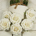 Prima - Winter Rose Collection - Flower Embellishments - Vanilla Ice, CLEARANCE