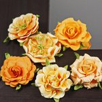 Prima - Lilliput Rose Collection - Flower Embellishments - Tropocale, CLEARANCE