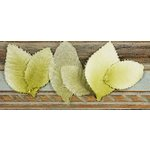 Prima - Calcutta Collection - Fabric Leaves - Willow, CLEARANCE