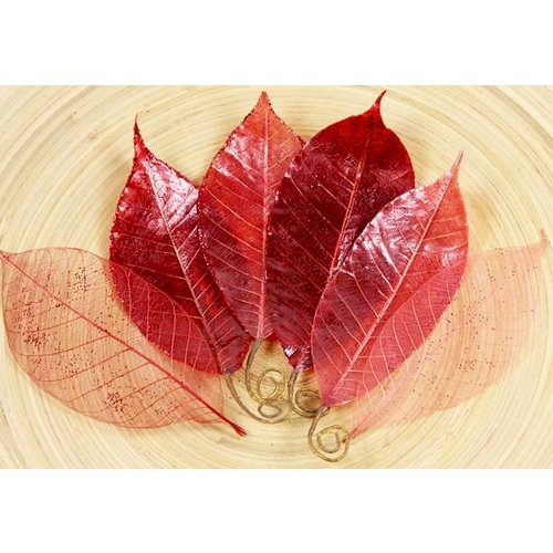Prima - Temple Collection - Lacquered Leaves - Dang Red, CLEARANCE