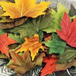 Prima - Autumn Collection - Mulberry Leaves - September