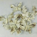 Prima - Butterflies Collection - Butterfly Embellishments - Papillon