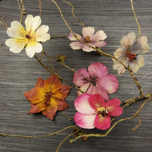 Prima - Bella Notte Collection - Flower Embellishments - Hickory