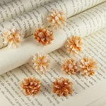 Prima - Gillian Collection - Flower Embellishments - Cider