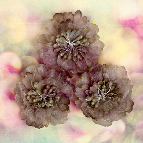 Prima - Hello Pastel Collection - Fabric Flower Embellishments - Gray