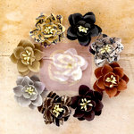 Prima - Engraver Collection - Flower Embellishments - Daisies