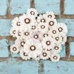 Prima - Rodanthe Collection - Flower Embellishments - Seashell