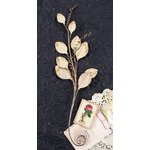 Prima - Providence Collection - Flower Embellishments - Bay