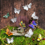 Prima - Sylvan Collection - Butterfly Embellishments - Farfalla