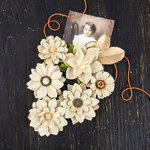 Prima - Coy Collection - Flower Embellishments - Hellaine