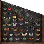 Prima - Forever Green Collection - 12 x 12 Double Sided Paper - Spread Your Wings