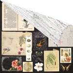 Prima - Forever Green Collection - 12 x 12 Double Sided Paper - Nature's Bounty