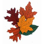 Paper Wizard - Holidays Collection - Die Cuts - Fall Leaves