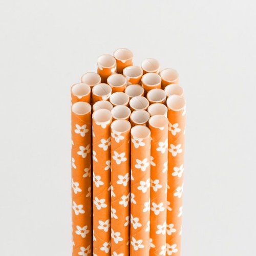 Queen and Company - Perfect Party Collection - Drinking Straws - Floral - Orange Crush