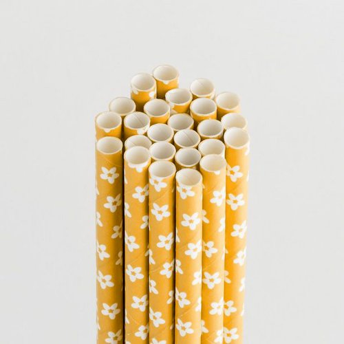 Queen and Company - Perfect Party Collection - Drinking Straws - Floral - Lemon Drop