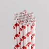 Queen and Company - Perfect Party Collection - Drinking Straws - Polka - Cherry Bomb