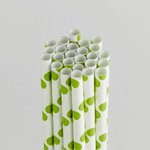 Queen and Company - Perfect Party Collection - Drinking Straws - Polka - Kiwi Kiss