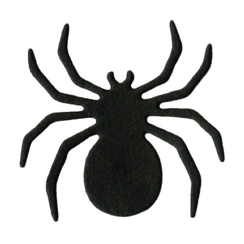 Superb image in printable spider