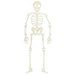 Lifestyle Crafts - Halloween - Die Cutting Template - Skeleton