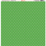 Ella and Viv Paper Company - Watermelon Fresca Collection - 12 x 12 Paper - Three