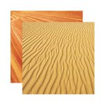 Reminisce - Elements Collection - 12 x 12 Double Sided Paper - Evolve