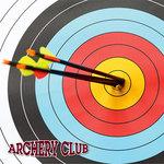 Reminisce - 12 x 12 Paper - Archery