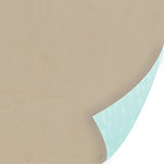 SEI - Forever Sassy Collection - 12 x 12 Double Sided Paper - Over The Taupe