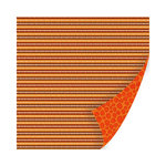 SEI - Entrada Collection - 12 x 12 Double Sided Paper with Foil Accents - Beni Savanna
