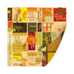 SEI - Entrada Collection - 12 x 12 Double Sided Perforated Sheet - Jungle Rhythm